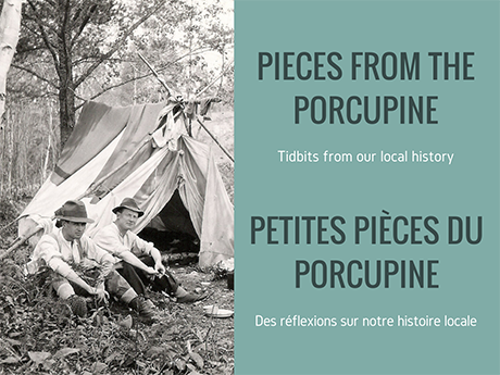 pieces_of_porcupine_460